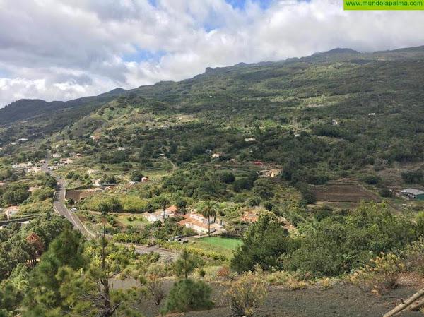 Transición Ecológica extiende el 'Proyecto ojeadores' a Fuerteventura, Lanzarote, La Palma y La Gomera