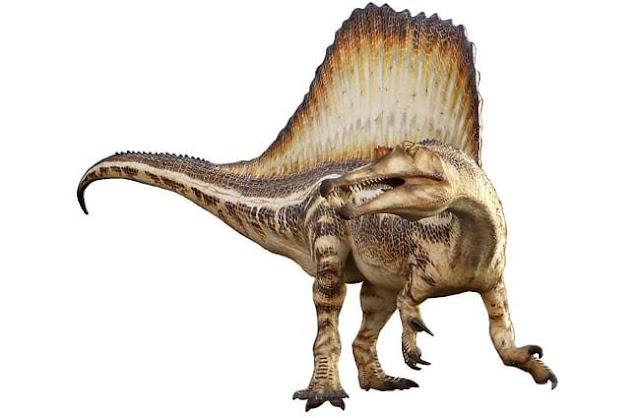 Spinosaurus, monster sungai yang kejutkan dunia paleontologi