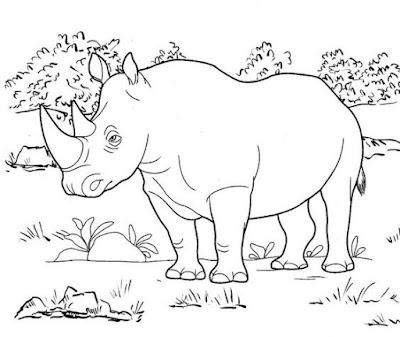 Tranh tô màu con tê giác trong rừng