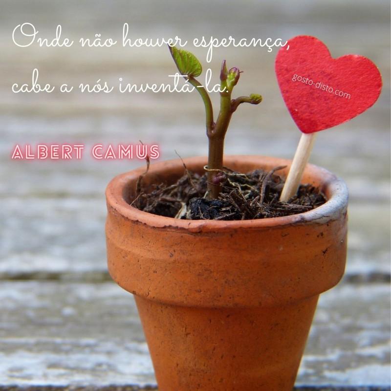 Frase sobre Esperança de Albert Camus