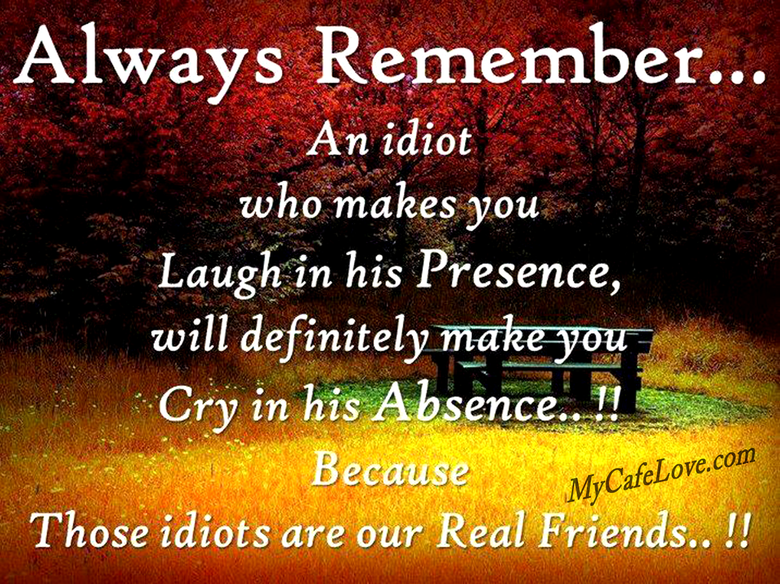 friendship relationship quotes and sayings