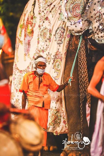 පළමු කුඹල් පෙරහරේ සුවීශේෂී අවස්ථාව ❤️☸️🙏🐘 / විවේක ගත්තේ නෑ පළමු කුඹල් පෙරහරටත් ආවා - නැදුන්ගමුව රාජා 🐘🙏☸️ (Nadungamuwa Raja - Palamu Kubal Perahara) - Your Choice Way