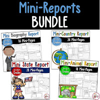 Mini Reports Bundle for 4 products