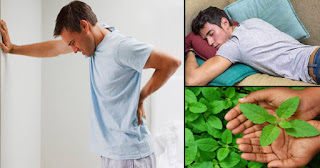 back-pain-home-remedies-07.04.20-1