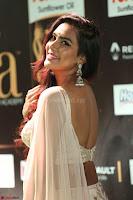 Prajna Actress in backless Cream Choli and transparent saree at IIFA Utsavam Awards 2017 0091.JPG