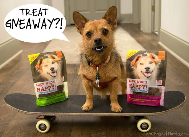 Giveaway: Look Who's Happy Dog Treat Giveaway