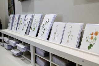 Botanical Prints at Burtown House Gallery