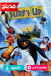 مشاهدة وتحميل فيلم ركوب الامواج Surfs Up 2007 مدبلج عربي