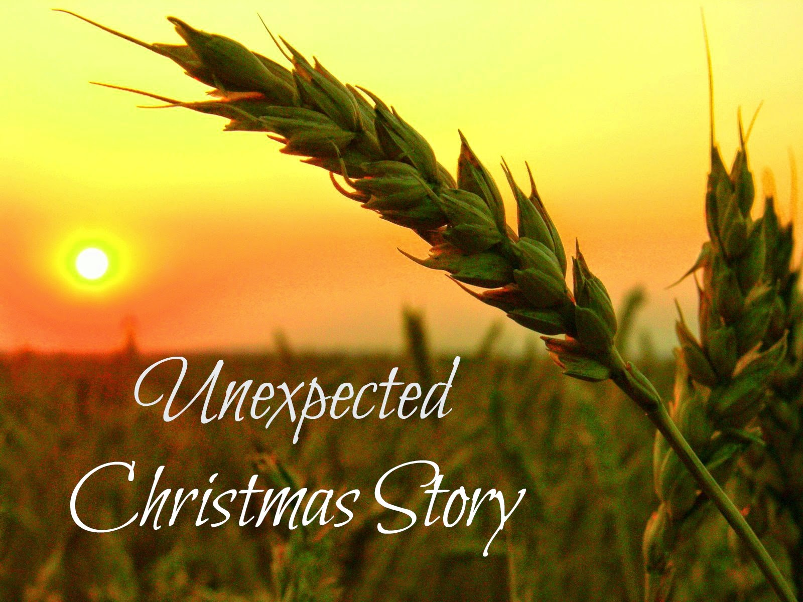 http://www.the-quiet-place.com/2014/12/an-unexpected-christmas-story.html