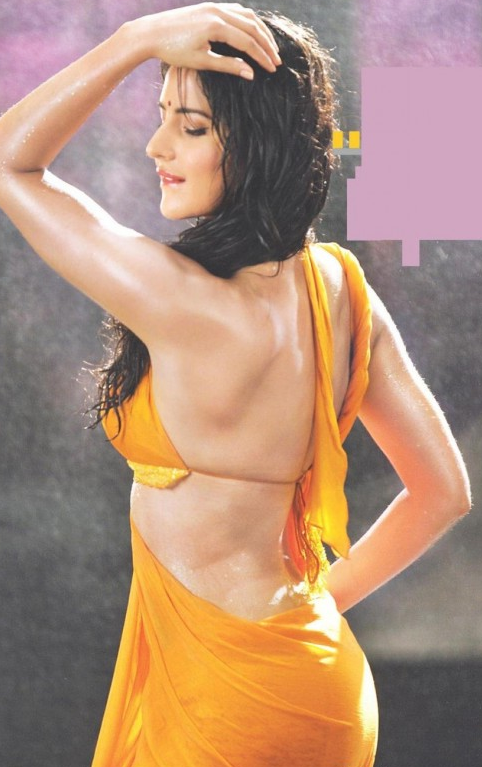 Opinion you katrina hot saree nude good