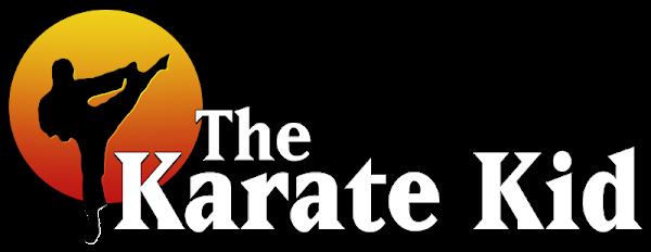 The Karate Kid Hindi dubbed 1984 Full Movie Dual Audio 720p