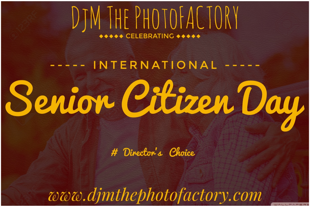 World Senior Citizen Day How to celebrate over the world