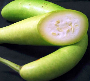 lauki in diabetes,bottle gourd for control diabetes
