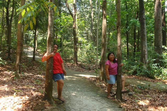 Manleluag Forest