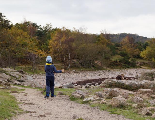 """Wandern auf Bornholm: Rund um Hammerknuden. Auf der dänischen Insel haben wir die Nordspitze Bornholms, auch """"Hammeren"""" genannt, erkundet und waren dort mit unseren Kindern wandern. Welche Route wir gewählt haben und welche Attraktionen es dort zu entdecken gibt, erzähle ich Euch auf Küstenkidsunterwegs."""