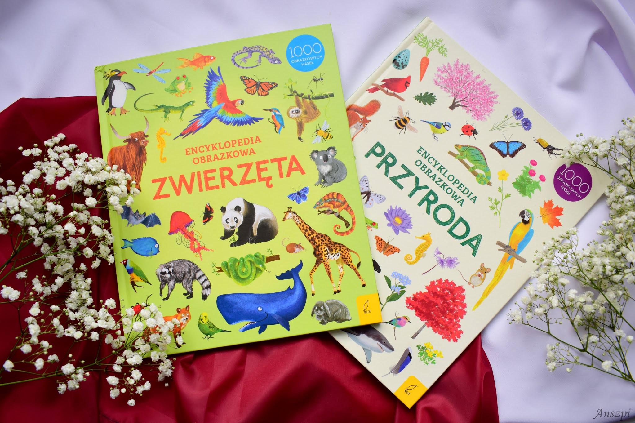 Obrazkowe encyklopedie dla dzieci od wydawnictwa Wilga