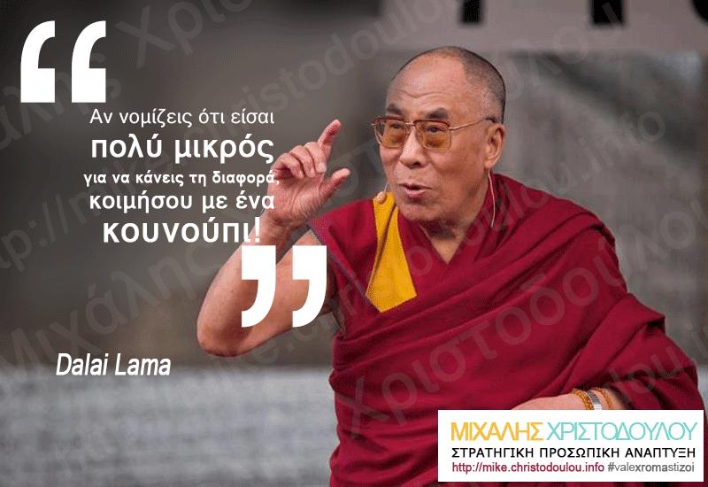 Δαλάι Λάμα - Αν νομίζεις ότι είσαι πολύ μικρός για να κάνεις τη διαφορά, κοιμήσου με ένα κουνούπι!