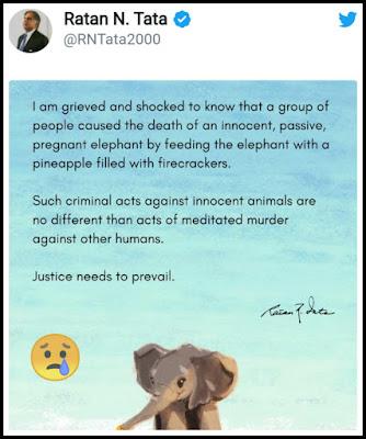 Ratan-Tata-Twitt-Kerala-elephant-die
