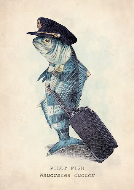 Fish dressed in airline pilot hat with luggage. The Pilot by Eric Fan