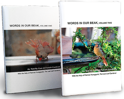 """This is a photograph of volumes one and two of my book series, """"Words In Our Beak."""" Info re these books is in another post on this blog @ https://www.thelastleafgardener.com/2018/10/one-sheet-book-series-info.html"""