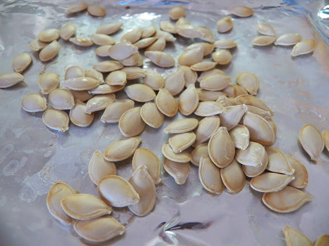 Toasted Squash Seeds