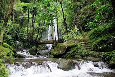 Segarkan Mata dan Pikiran, Kunjungi Tempat Wisata di Solo Berbasis Alam Ini