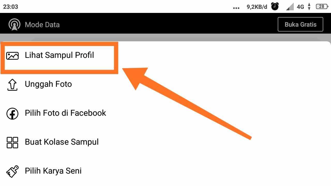 Cara membuat foto profil fb tidak bisa di like