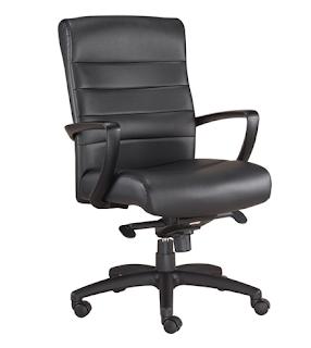 Eurotech Manchester Chair