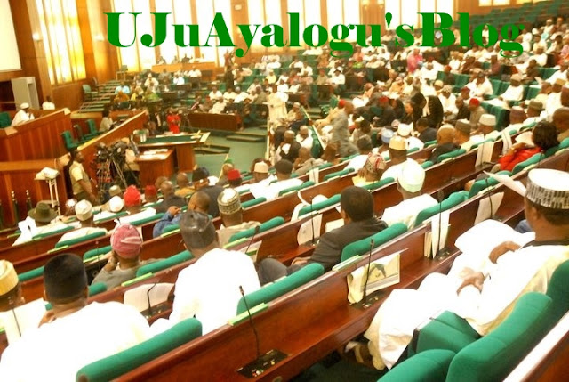 Reps fix minimum age for presidential aspirants at 35