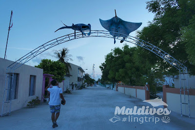 Maafushi Island Maldives Review