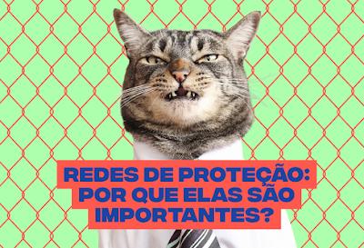 Telas de Proteção para Gatos