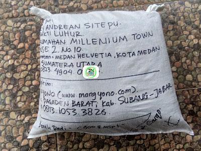 Benih Padi Pesanan  RICKY ANDREAN Medan, Sumut.  Benih Sesudah di Packing