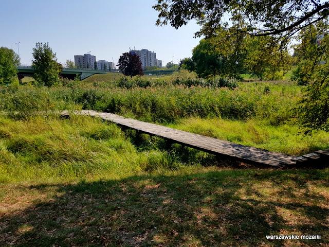 kładka Warszawa Warsaw Mokotów park parki teren zielony Dolinka Służewiecka drzewa