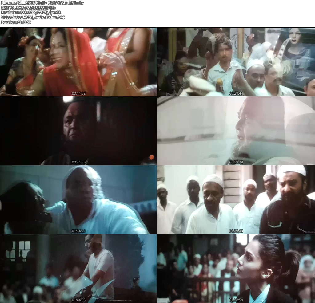 Mulk 2018 Hindi - HQ DVDScr x264 | 480p 300MB | 100MB HEVC Screenshot