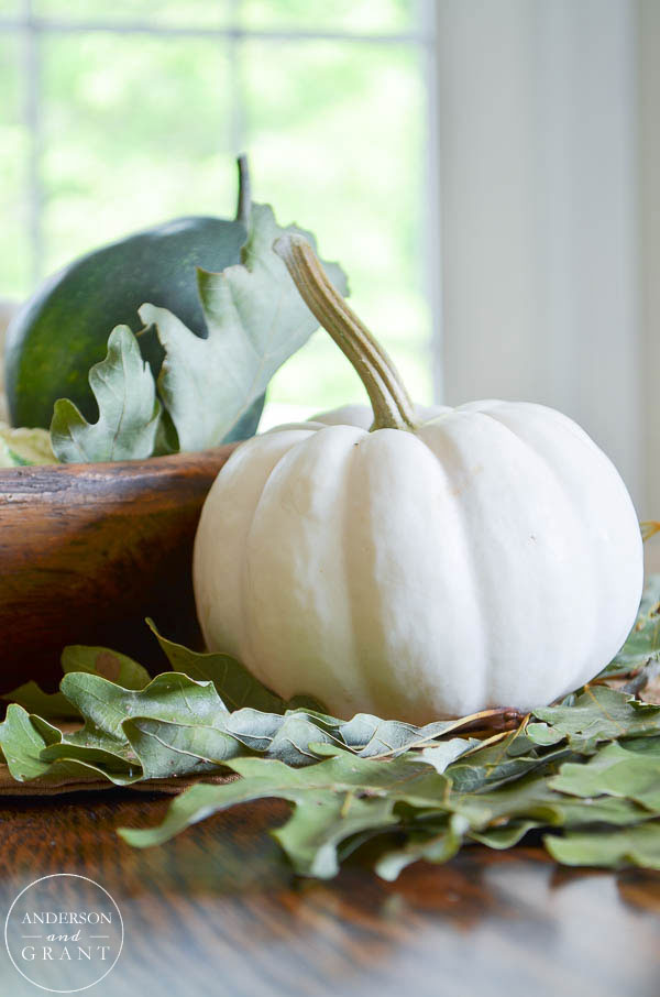 Simple white fall pumpkin and oak leaves.  | www.andersonandgrant.com