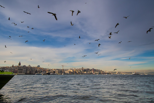 Zona del porto (Eminonu)-Istanbul