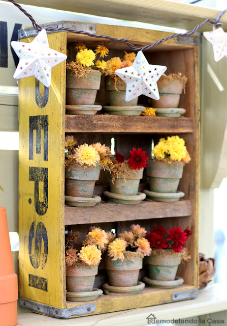 little terracotta planters on pepsi crate
