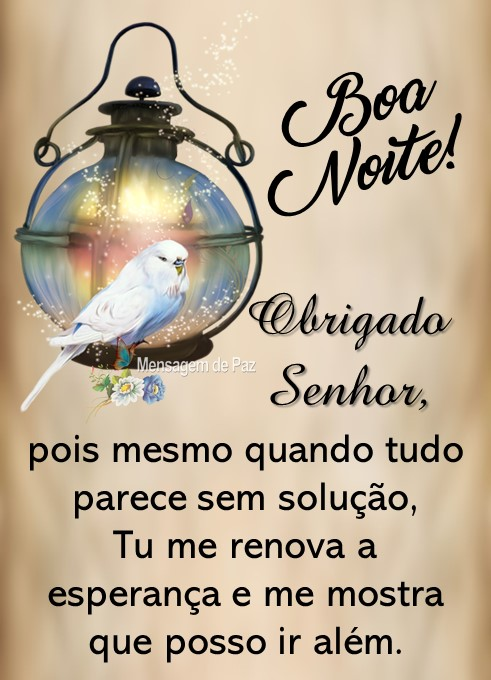 Obrigado Senhor,  pois mesmo quando tudo   parece sem solução,   Tu me renova a esperança   e me mostra que posso ir além.  Boa Noite!