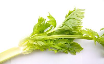 manfaat daun seledri, manfaat daun seledri untuk rambut, manfaat daun seledri untuk wajah, manfaat daun seledri untuk ibu hamil, manfaat daun seledri untuk diet, manfaat daun seledri buat rambut, manfaat daun seledri untuk menurunkan darah tinggi, manfaat daun seledri untuk lovebird, manfaat daun seledri bagi rambut, manfaat daun seledri untuk kecantikan, manfaat daun seledri buat ginjal,
