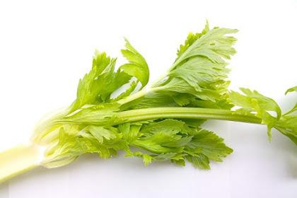 10 Manfaat minum jus daun seledri untuk kesehatan badan