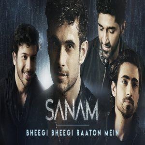 Bheegi Bheegi Raaton Mein – SANAM (2018)
