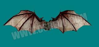 Model - Paraquedas Krilo2
