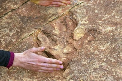 Turis di Utah Tanpa Sadar Sudah Membuang Jejak Dinosaurus