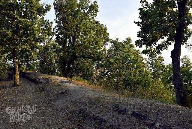 Szigliget óvárának nyugati falszakasza kb. térdmagasságig álló kő falrészek.