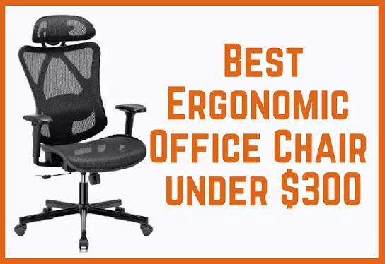 Best Ergonomic Chairs under 300 dollars