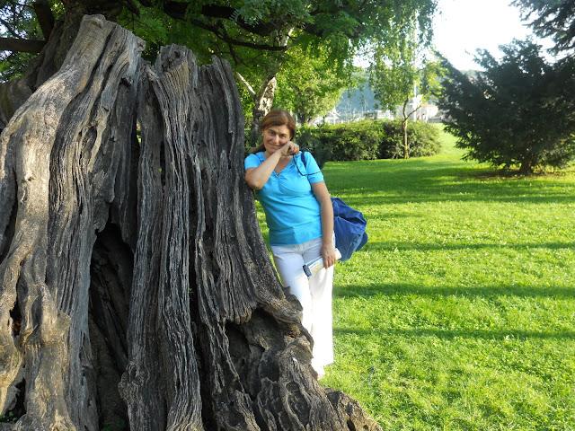 Giardino a Budapest, donna appoggiata ad un albero