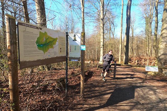 Bois de Lauzelle Ottignies-Louvain-la-neuve things to do