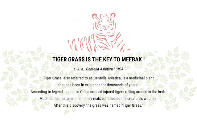 The benefits of Tiger Grass for the skin by barbies beauty bits