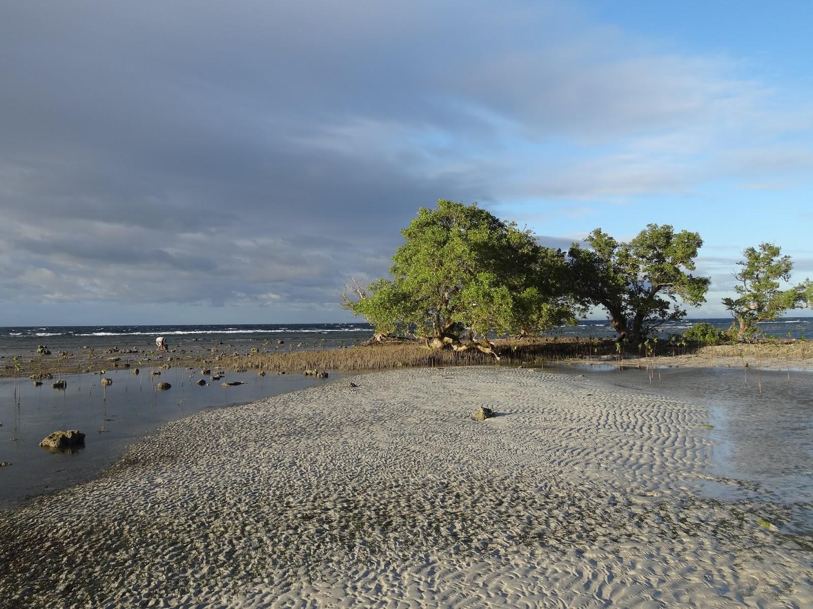 Siquijor Kiwi Dive Resort plage