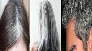 وصفة من الطبيعة للقضاء على الشعر الأبيض